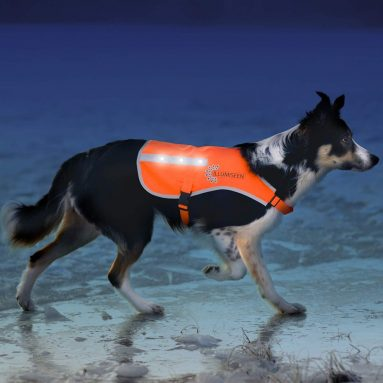 LED Dog Vest | Orange Safety Jacket with Reflective Strips & USB Rechargeable LED Lights