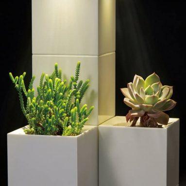 LeGrow Self-Watering Indoor Planter