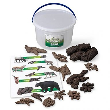 Life form Replica, Bucket of Scat, 13 Different Animals