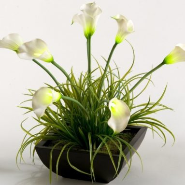 Lighted Calla Lilies in Square Metal Planter