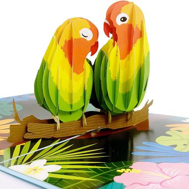 Lovebirds Pop Up Card