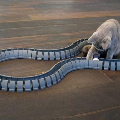 Magic Cat Track and Ball Toy