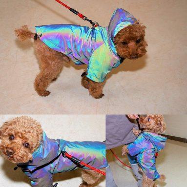 Musonic Dog Raincoat