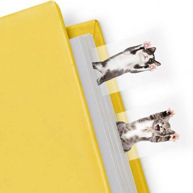 Mustard Cat in a Book