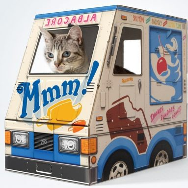 OTO Ice Cream Truck for Cats