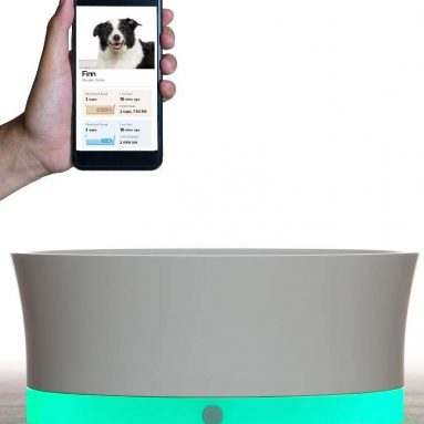 Obe ProBowl Smart Dog Bowl