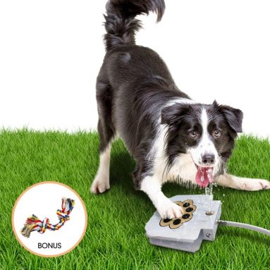 Outdoor Dog Pet Water Sprinkler Easy Activated Dog Water Fountain