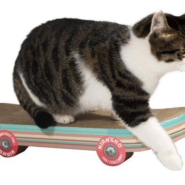 Pawnie Skateboard