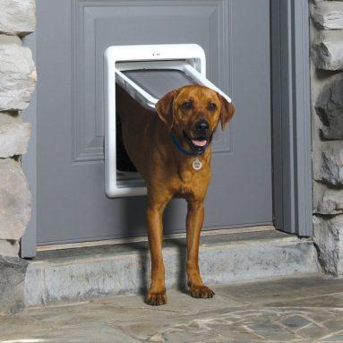 PetSafe SmartDoor Plus Pet Door