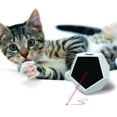 Playdot! Cat Laser Toy- 4 Operating Modes Make this Cat Toy Interactive!