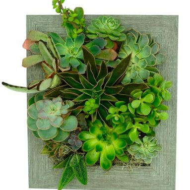 Portrait Gardens Wall Planter