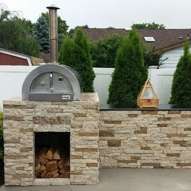 Professional Stainless Steel Wood Fired Pizza Oven