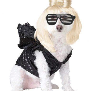 Pup-A-Razzi Pop Sensation Dog Costume