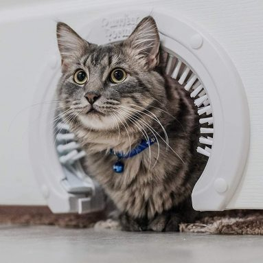 Purrfect Portal Cat Door for Interior Doors with Grooming Brush