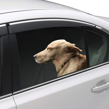 Riders Golden Retriever Window Cling