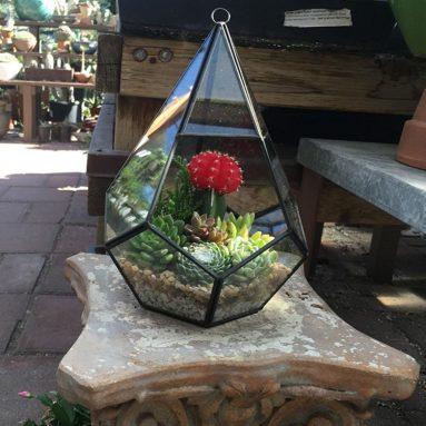 Rustic Indoor / Outdoor Geometric Glass Diamond Shaped Terrarium