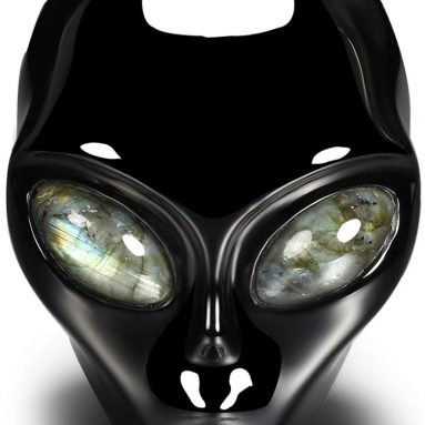 Skullis 4.0″ Black Obsidian Crystal Alien Skull with Labradorite Eyes