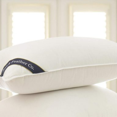 Snuggle Soft 850 Fill Power Goose Down Luxury Pillow