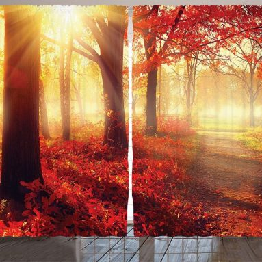 Sun Rise through Misty Old Forest in Fall Season curtains