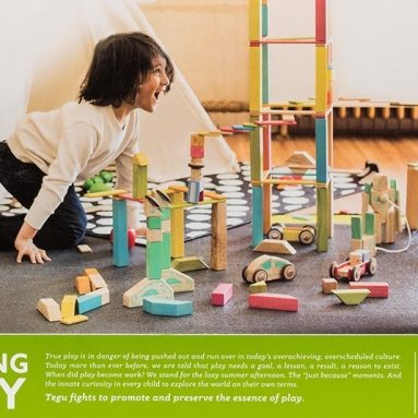 Tegu Expansion Pack Extra Large Tints Building Blocks