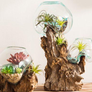 Terrarium Décor Planter