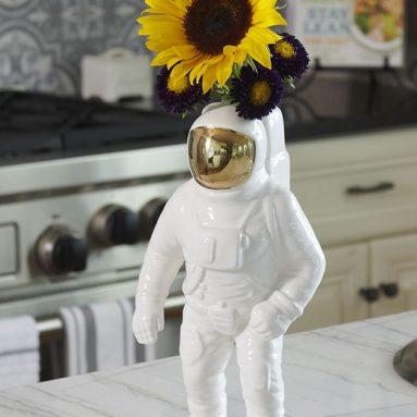 The Astro Botanist's Vase
