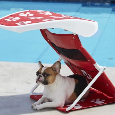 The Instant Pet Sunshade