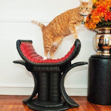 Throne Luxury Cat Bed