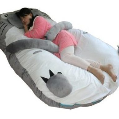 Totoro Double Bed Sleeping Bag Pad Sofa