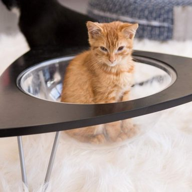Tripod – Cat Lounge Pod