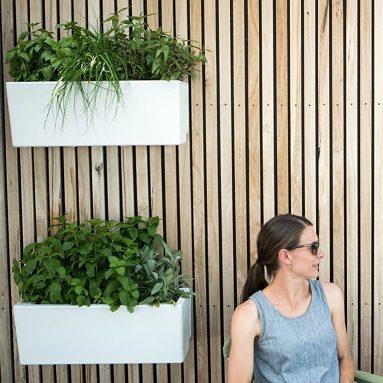 Urban Garden Self-Watering Mini Wall Planter