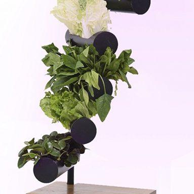 Vertical Garden with Full Spectrum Growth Lamp