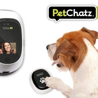 Video Pet Camera