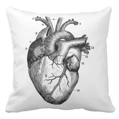 Zazzle Human Heart