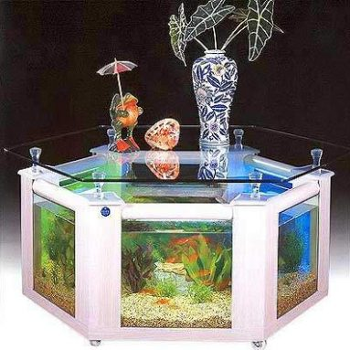 TOP 7 Coffee Table Aquarium