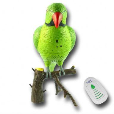 Recordable Parrot Wireless Doorbell