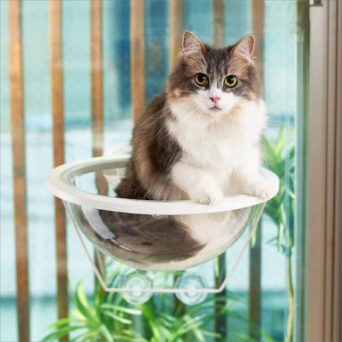 Clear Capsule Planet Window Cat Bed