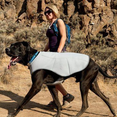 Cooler Cooling Vest Cooling Vest