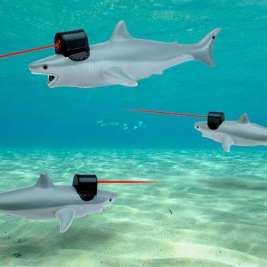 Shark With Frickin' Laser Pointer