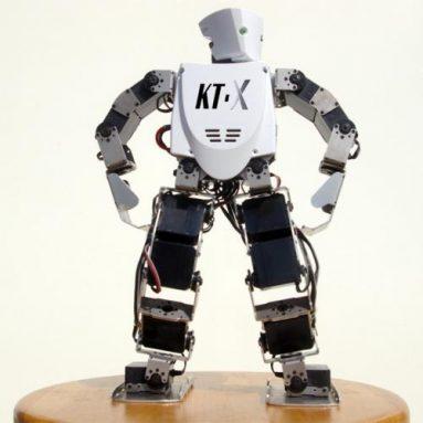Roboporium KT-X KumoTek Robot
