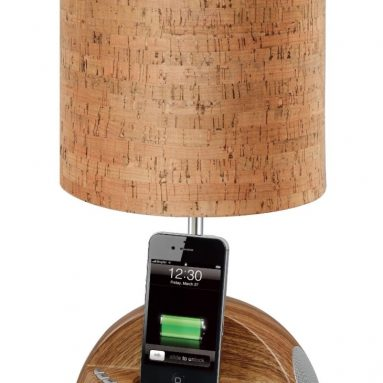 Docking Station with FM Radio and Alarm Clock for iPod and iPhone