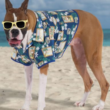 The Canine Hawaiian Shirt