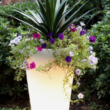 Glow Illuminated Planter