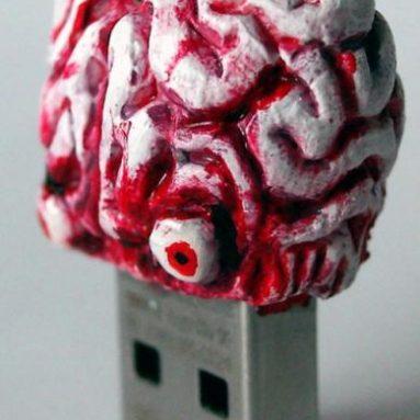 Flash memory brain