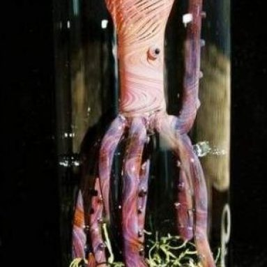 Octopus oil lamp
