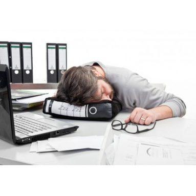 Power Nap / Office Pillow