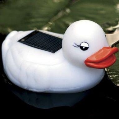 Solar Rubber Duckie