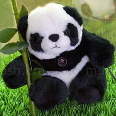 USB Panda Web Cam